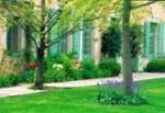 Jardin Orangerie