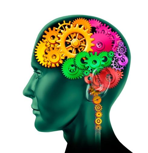 Connexion cerveau